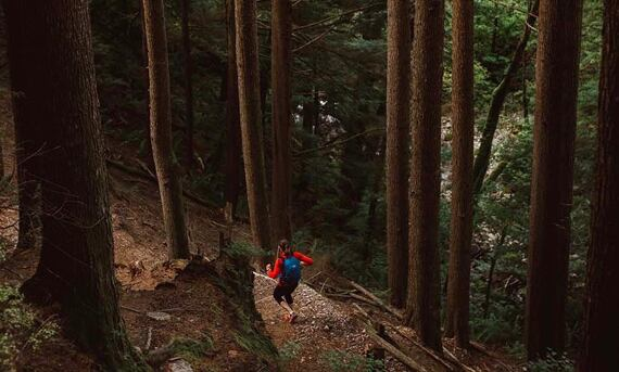 Lowe Alpine batoh Aeon 25