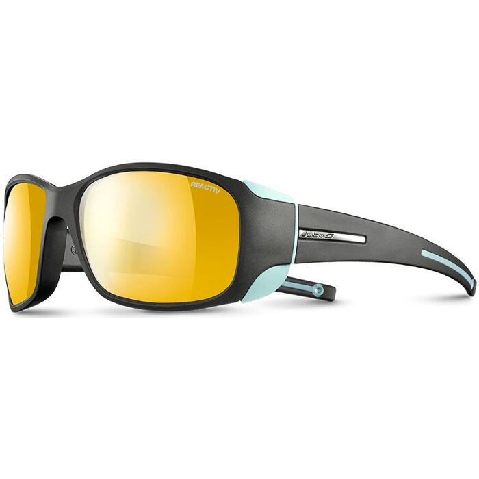 Julbo Monterosa Reactiv Performance